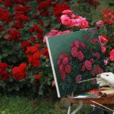松下洸平の母親は画家で元ボディビルダーだった!芸術のセンスは母譲り?