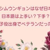 シムウンギョンはなぜ日本に?日本語は上手い?下手?子役出身でベテランだった