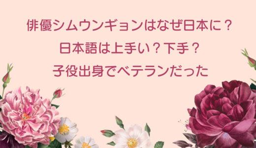 シムウンギョンはなぜ日本に?日本語は上手い?下手?子役出身のベテラン女優だった