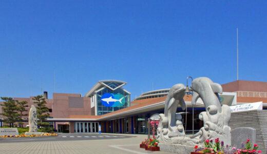 大洗水族館のイルカショーの時間や混雑情報や料金などご紹介!